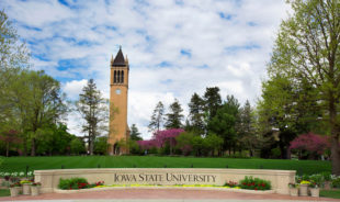 Iowa State names Dorhout as next vice president for research