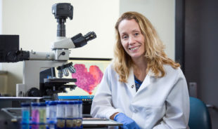 Iowa State researchers find obesity impacts reproductive health, increases sensitivity to chemical exposures